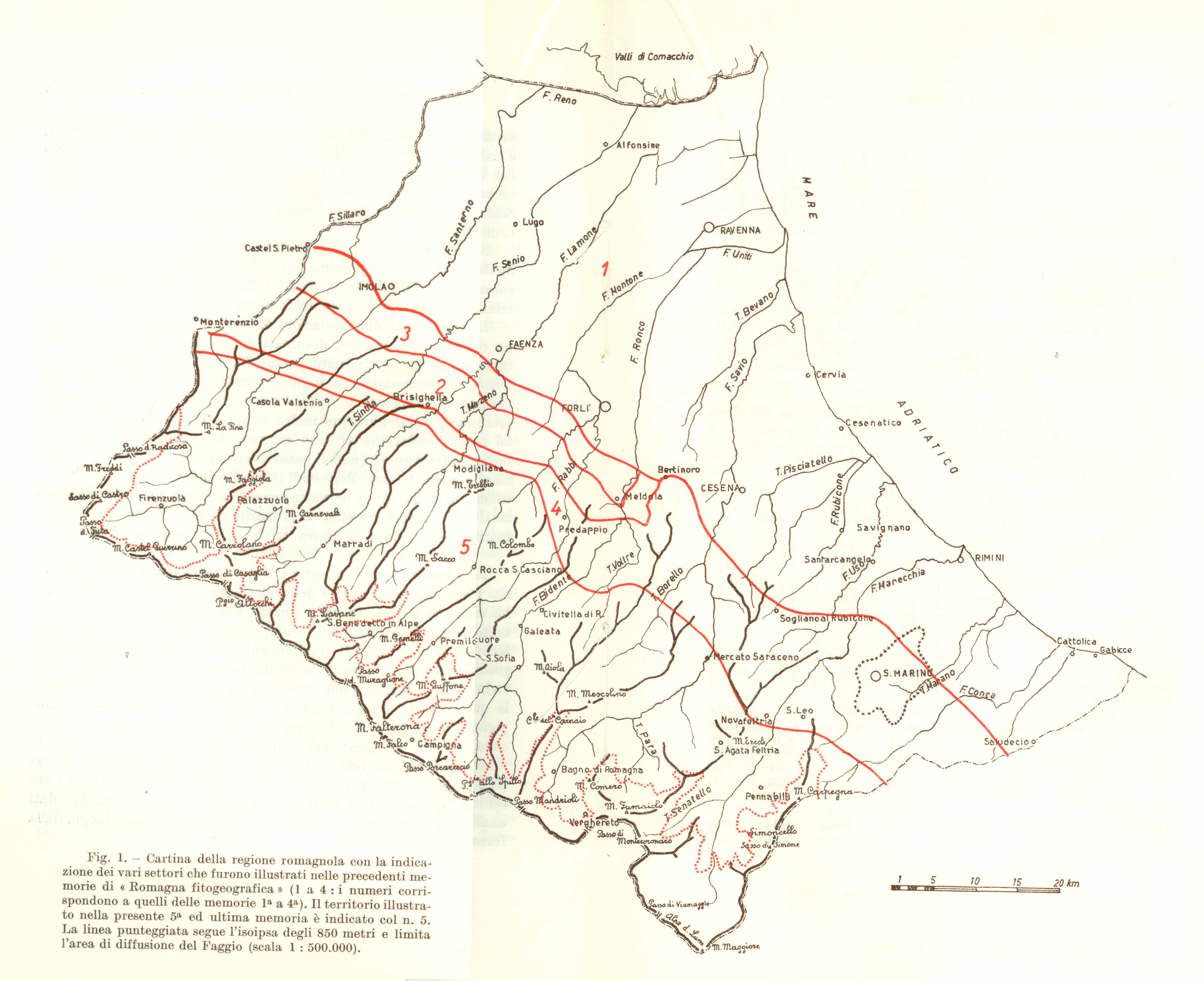 Zone Fitogeografiche descritte da Zangheri